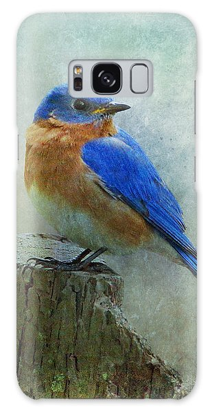 Eastern Bluebird II Galaxy Case
