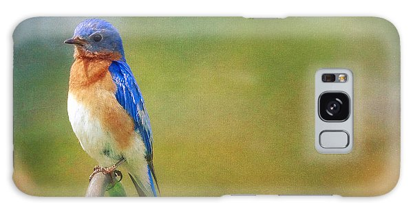 Galaxy Case featuring the photograph Eastern Bluebird Painted Effect by Heidi Hermes