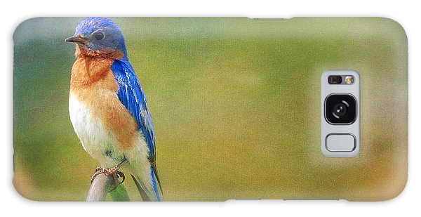 Eastern Bluebird Painted Effect Galaxy Case by Heidi Hermes