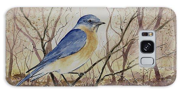 Bluebird Galaxy Case - Eastern Bluebird by Sam Sidders