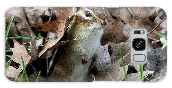 Eastern Chipmunk Galaxy Case