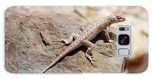 Eastern Fence Lizard, Sceloporus Undulatus Galaxy Case