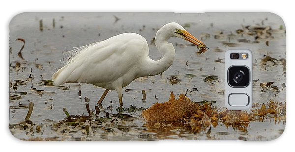 Eastern Great Egret 10 Galaxy Case