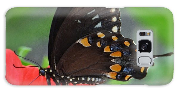 Eastern Swallowtail Galaxy Case by Penni D'Aulerio