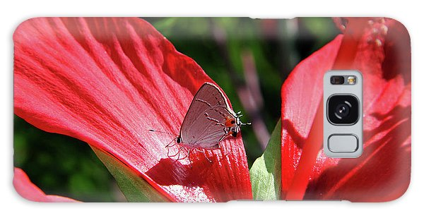 Eastern Tailed Blue Butterfly On Red Flower Galaxy Case