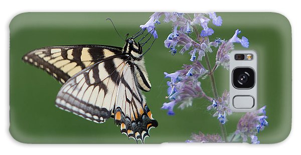 Eastern Tiger Swallowtail Profile Galaxy Case by Patti Deters