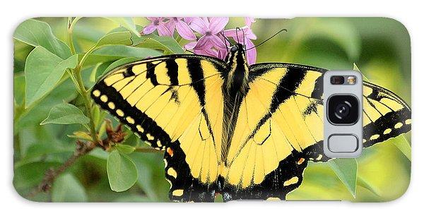 Eastern Tiger Swallowtail Butterfly Galaxy Case