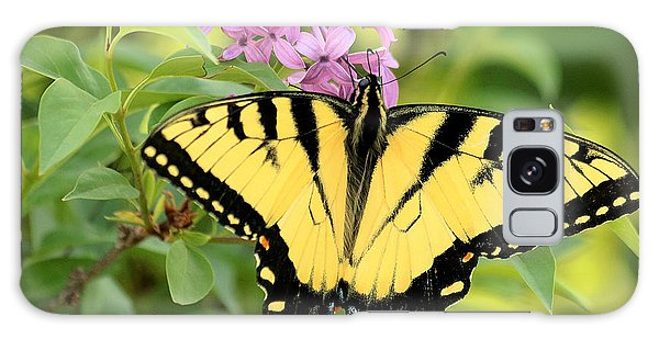 Eastern Tiger Swallowtail Butterfly Galaxy Case by Sheila Brown