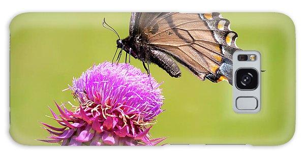 Eastern Tiger Swallowtail Dark Form  Galaxy Case