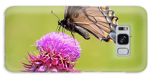 Galaxy Case featuring the photograph Eastern Tiger Swallowtail Dark Form  by Ricky L Jones