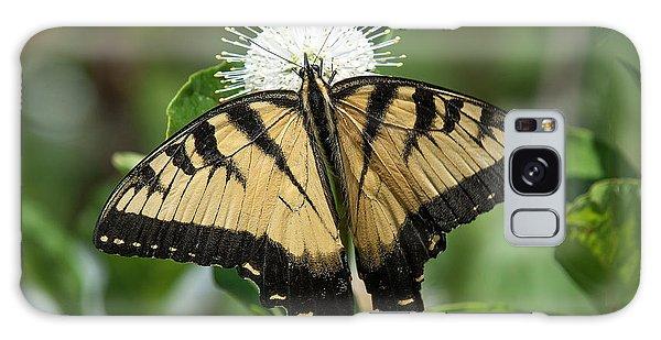 Eastern Tiger Swallowtail Din0254 Galaxy Case