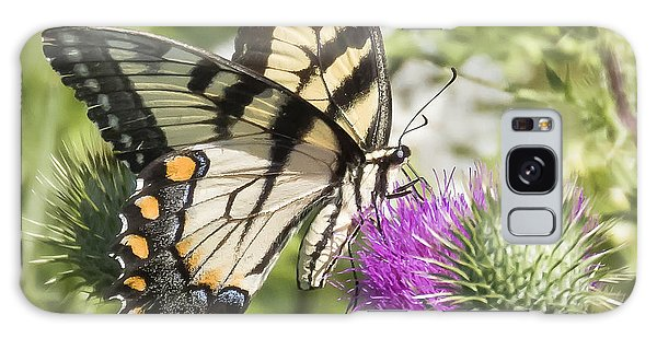 Eastern Tiger Swallowtail Galaxy Case by Ricky L Jones