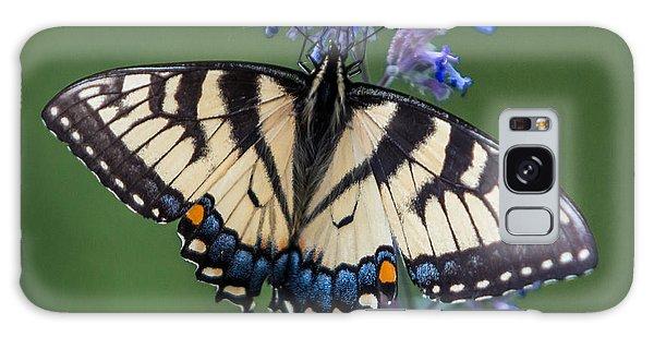 Eastern Tiger Swallowtail Wingspan Galaxy Case
