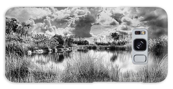Everglades Lake 5678bw Galaxy Case