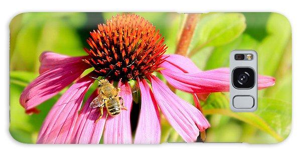 Echinacea Bee Galaxy Case