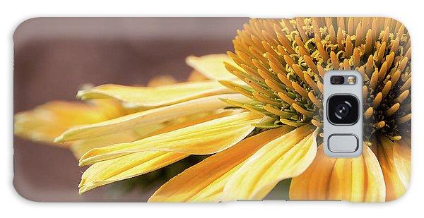 Echinacea, Cheyenne Spirit - Galaxy Case