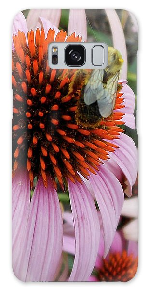 Echinacea Tea Time For Bee Galaxy Case