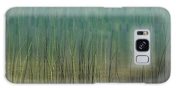 Edge Of The Lake - 365-262 Galaxy Case by Inge Riis McDonald