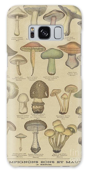 Edible And Poisonous Mushrooms Galaxy Case