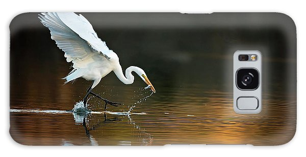 Egret At Sunset Galaxy Case