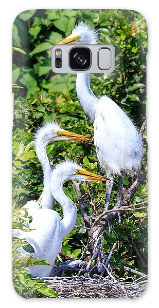 Egret Babies Galaxy Case