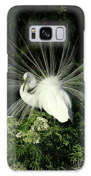 Egret Fan Dancer Galaxy Case