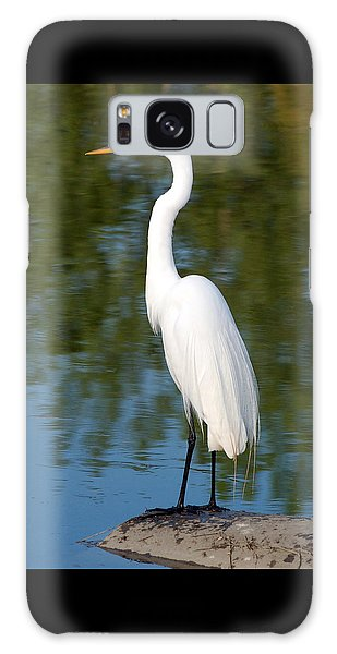 Egret Standing Galaxy Case by Kathleen Stephens