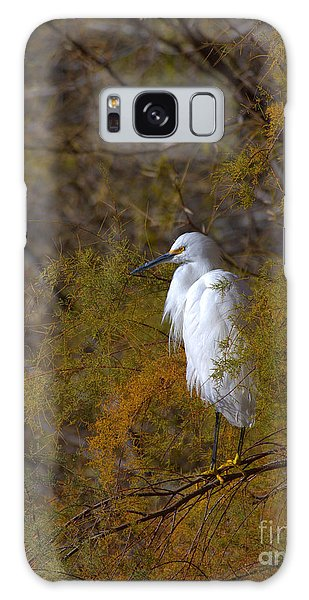 Egret Surrounded By Golden Leaves Galaxy Case by Ruth Jolly