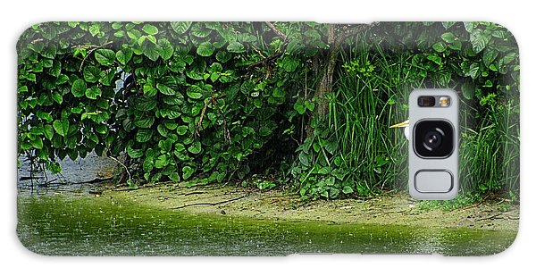 Egret Wakodahatchee Florida Wetlands Galaxy Case by David Mckinney