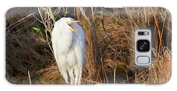 Egret With Something To Say Galaxy Case by George Randy Bass
