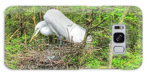 Egrets And Eggs Galaxy Case