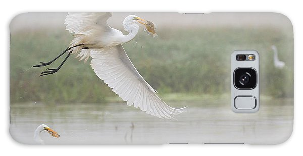 Egrets Fish Galaxy Case