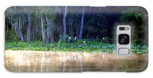 Egrets On A Fence Galaxy Case