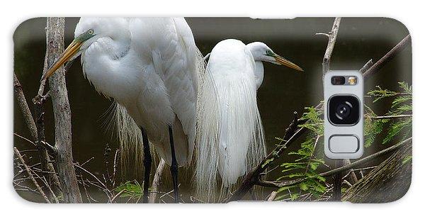 Egrets Galaxy Case