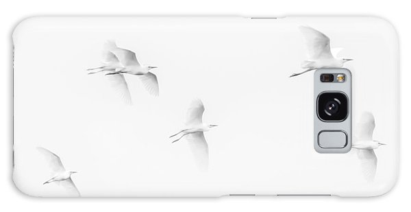 Egrets White On White B/w Galaxy Case