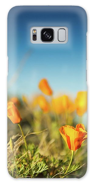 Galaxy Case featuring the photograph El Paso Poppies by SR Green
