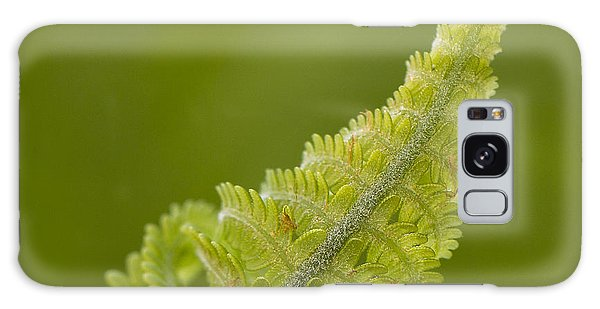 Elegant Fern. Galaxy Case