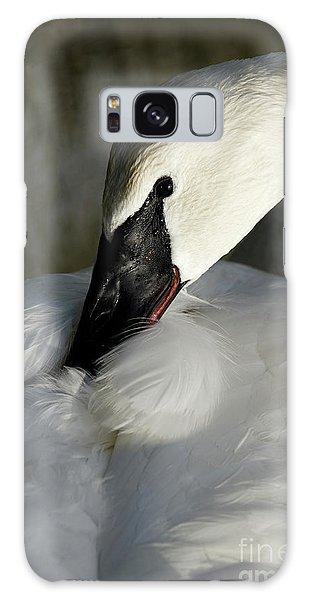Elegant Trumpeter Swan Galaxy Case