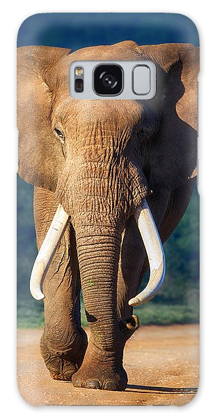 Elephant Approaching Galaxy Case