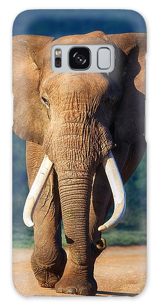 Old Road Galaxy Case - Elephant Approaching by Johan Swanepoel