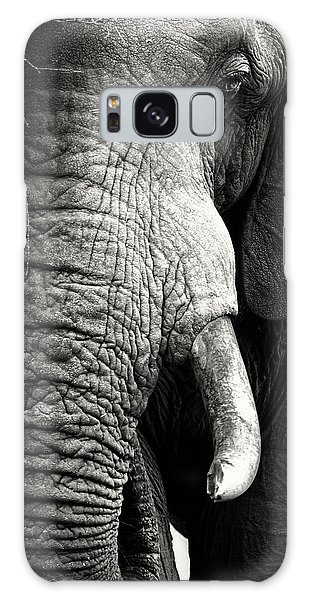 Elephant Close-up Portrait Galaxy Case