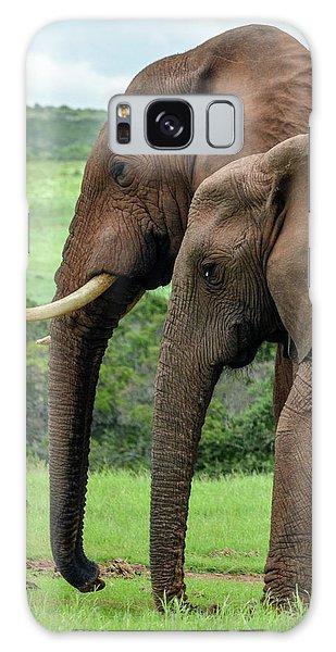 Elephant Couple Profile Galaxy Case