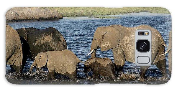 Elephant Crossing Galaxy Case