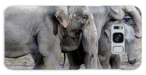 Elephant Family Galaxy Case by Laurel Talabere