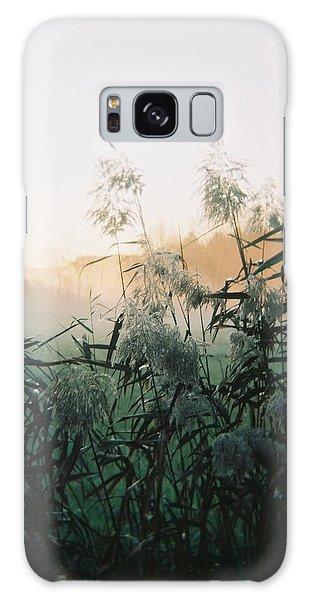 Elephant Grass At Dawn Galaxy Case