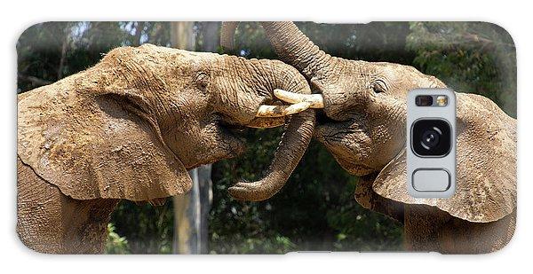 Elephant Play Galaxy Case