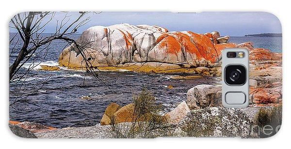 Elephant Rock - Bay Of Fires Galaxy Case by Lexa Harpell