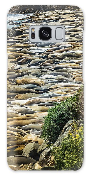Elephant Seals Pierdras Blancas Galaxy Case