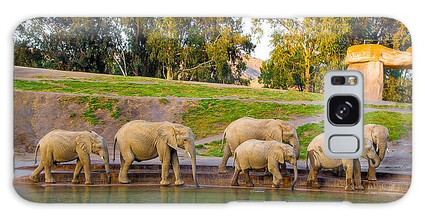 Elephants Are Family Galaxy Case by April Reppucci