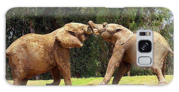 Elephants At Play 2 Galaxy Case